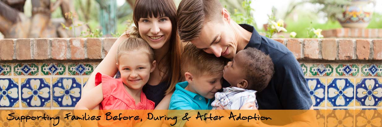 adopt an agency report The adoption and foster care analysis and reporting system (afcars) collects case-level information on all children in foster care and those who have been adopted with title iv-e agency.