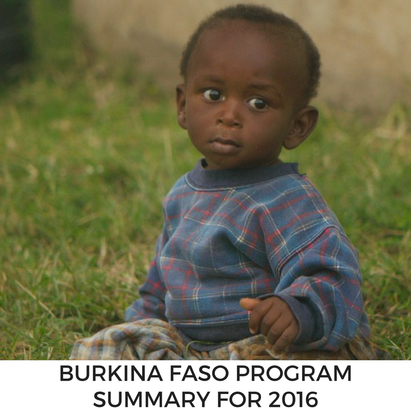 Program Summary for MLJ's Burkina Faso program in 2016.