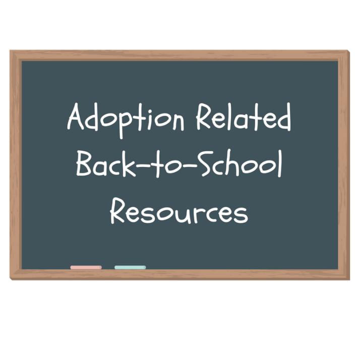the complete book of international adoption davenport dawn
