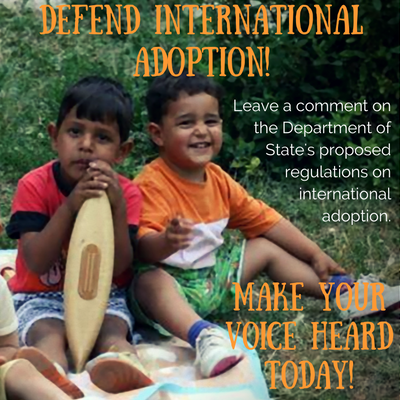 defend-international-adoption4