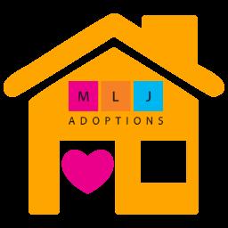 waiting child logo with MLJ